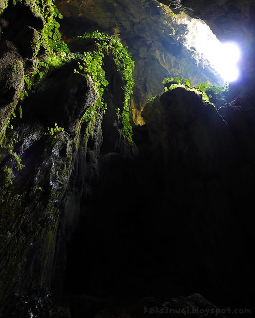 Fairy Cave 05 Towering Staglamite