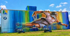 Let's Preserve Creation - Largest mural in Houston's history
