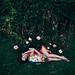 Maydream by Chrissie White