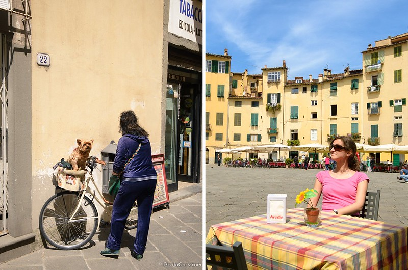 in Lucca