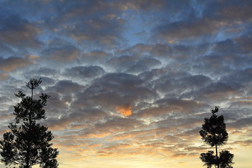 sunset silhouette clouds australia nsw lismore hooppines