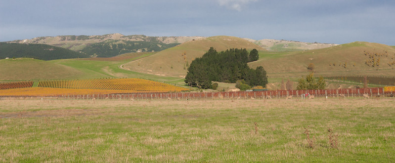 Waipara winery tour_01