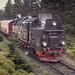 Schmalspurbahn Harz by derultrazauberer