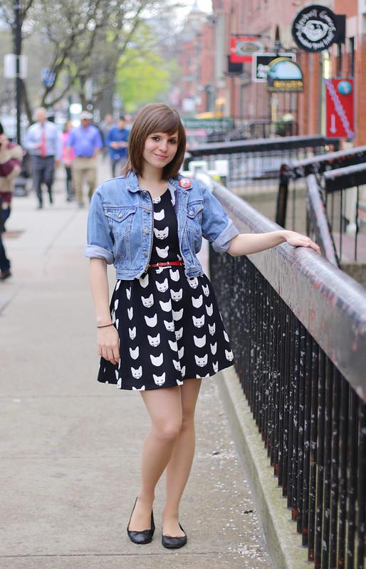 cat dress, cat print dress, H&M cat dress, jurassic park pin, jurassic park, denim jacket, cropped denim jacket, boston, street style, newbury street, newbury street boston, boston ma