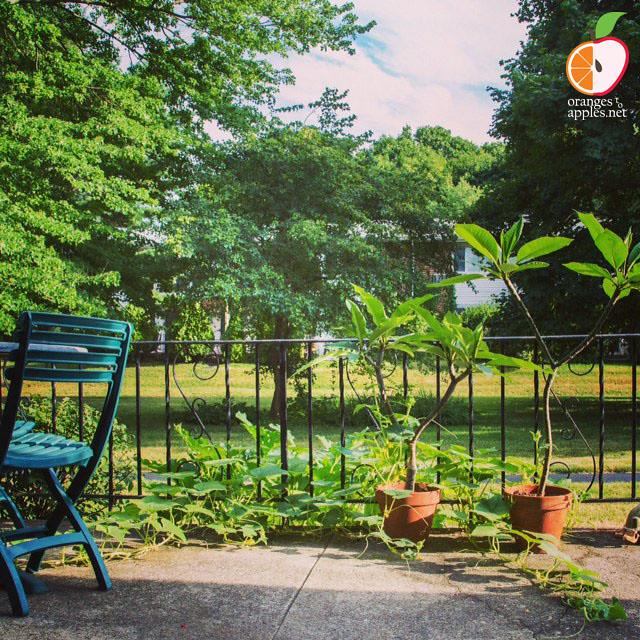 Garden_WM