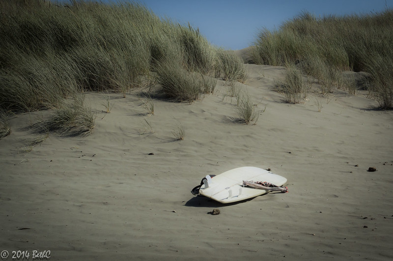 152-365 Surfin'