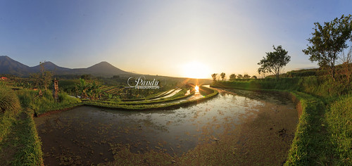 morning bali panorama sunrise indonesia landscape photography tour village mount guide ricefield jatiluwih baliphotography balitravelphotography baliphotographytour baliphotographyguide