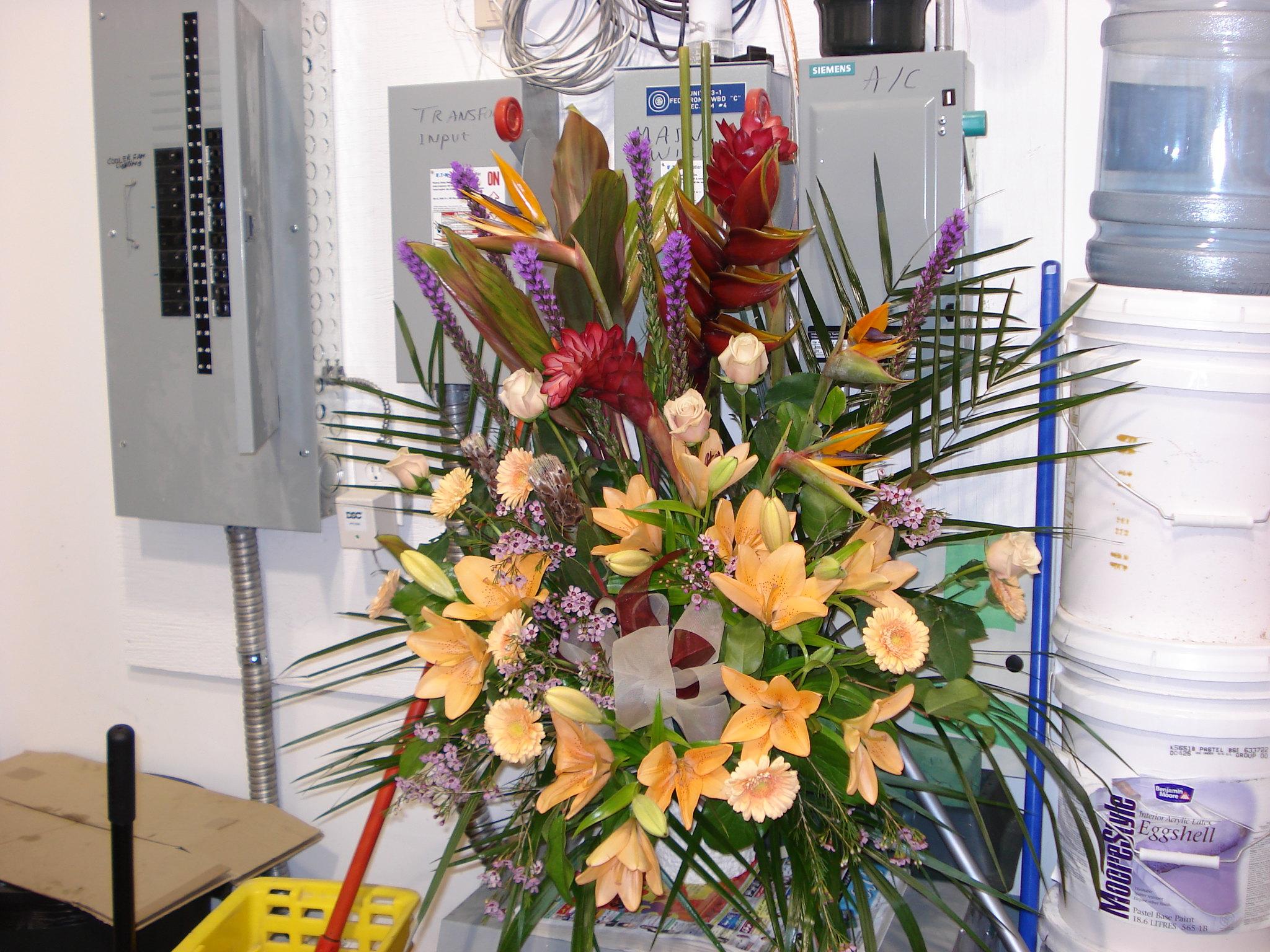 Farah Florist F-FB-12