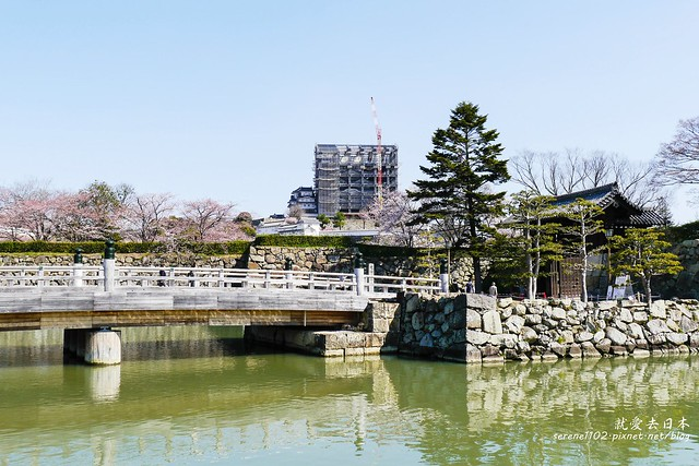 0331D6姬路、神戶_53