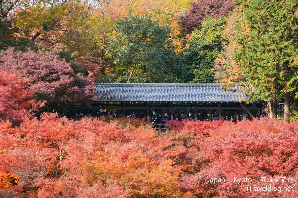 京都 东福寺22