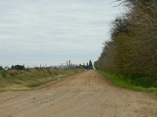 Calle 36 en zona rural - Villa Cañas - Santa Fe