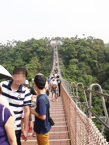 南投天空之橋、微光森林、微熱山丘3