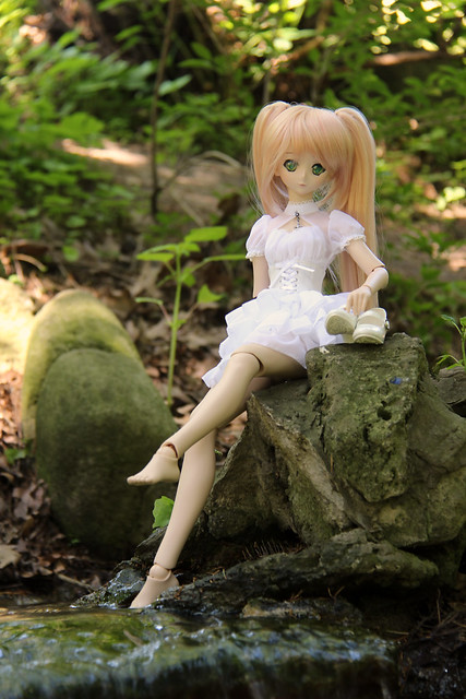 High Park Doll Meet
