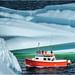 """""""Iceberg Quest"""" by julian earle"""