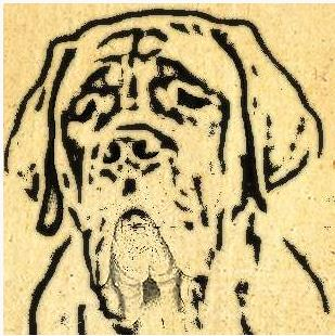 The mastiff sketch from 66 Days at Sea