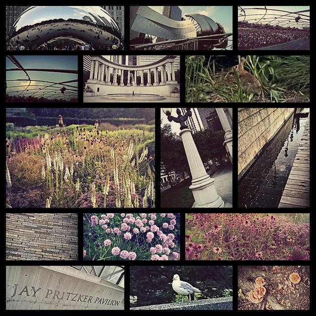 Most of Millennium Park