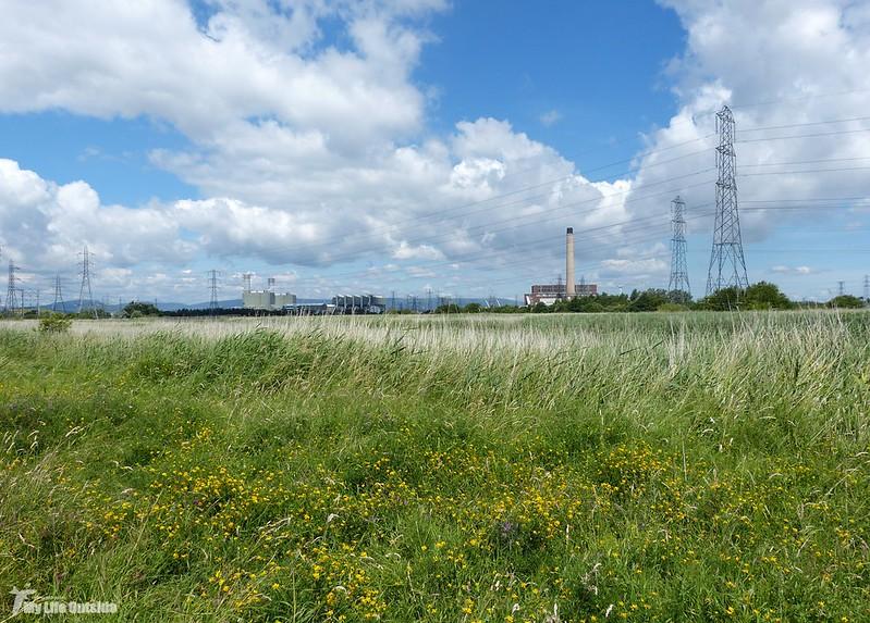 P1080102 - Newport Wetlands
