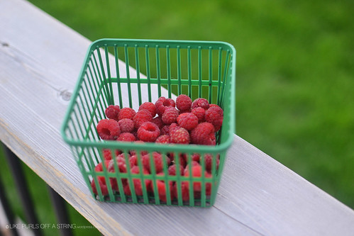 Fruition raspberries