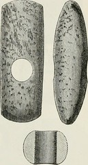 "Image from page 216 of ""The ancient stone implements, weapons, and ornaments, of Great Britain"" (1872)"