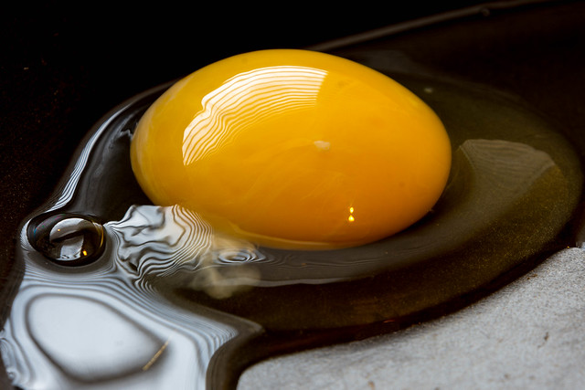 Reflections on an egg