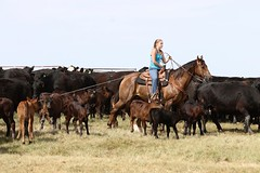 Women really do rule the world. They just haven't figured it out yet. When they do, and they will, we're all in big big trouble. ~Doctor Leon #cowgirlsofinstagram #brandingseason #ranchlife #aqha #specialareas
