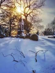 The Dead of Winter No57