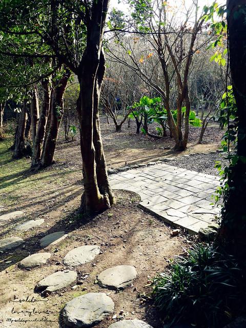 陽明山一日遊免門票景點花卉試驗中心 (29)