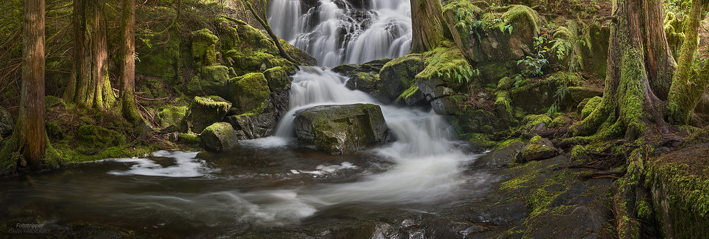 'Visiting Old Friends' - Sooke Potholes, Vancouver Island