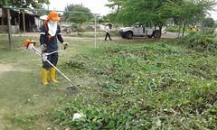 Limpieza de malezas en varios sectores de Chone