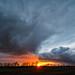 Glowing Rain by Matt Molloy