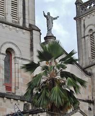 Tropical Jesus