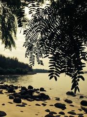 Punngol Beach
