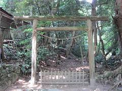 shrine197