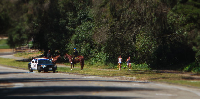 Horse Police and Runners in Golden Gate Park, San Francisco (2014)