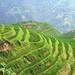 Small photo of China
