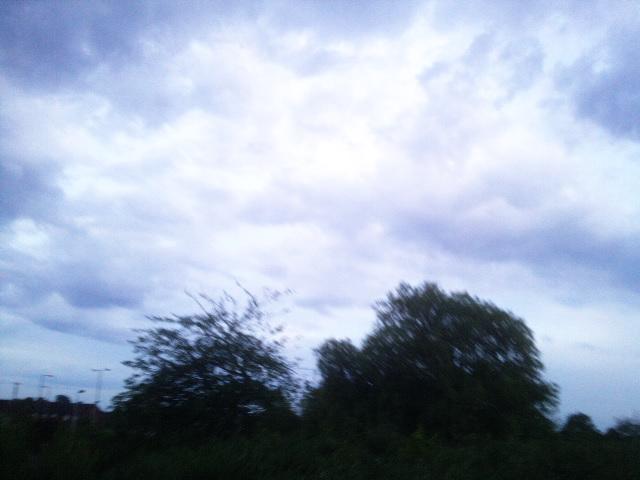 PIC_1392