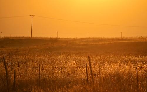 desktop sunset landscape israel golanheights golan featured