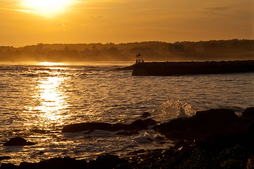 Kennebunkport Gold [Explored briefly June 21, 2014]