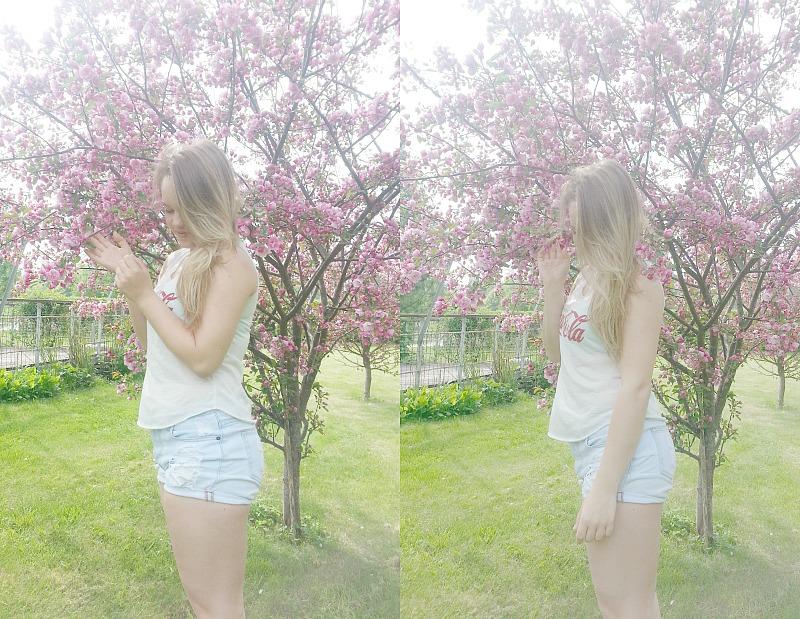 kukkis