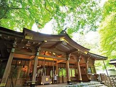 shrine104