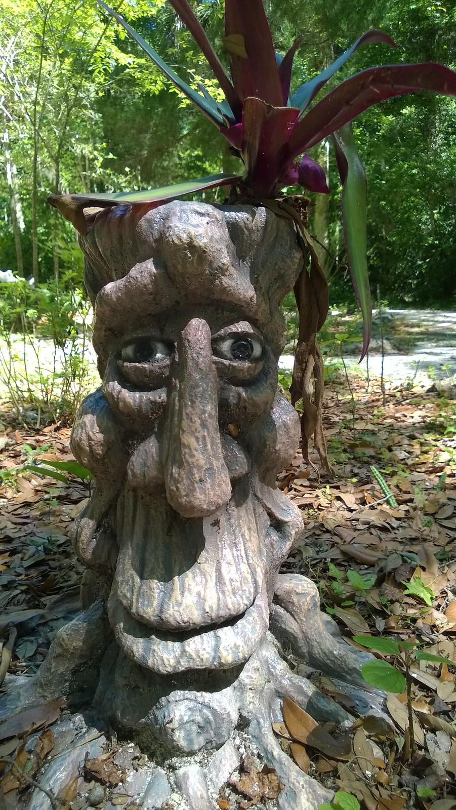 Bongoland - Happy tree fellow?!
