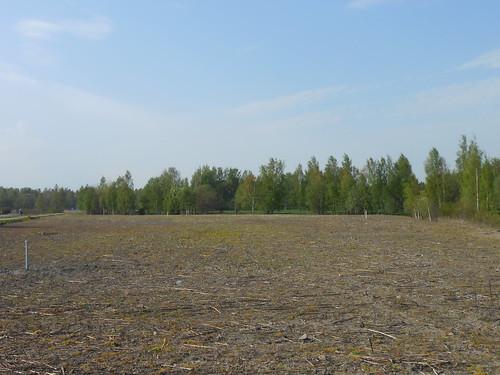 Peltonäkymä, Pohjois-Tapiola Espoo 19.5.2014
