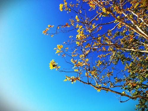 Beautiful sky, beautiful weather, beautiful day