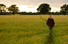 20140703-02a_Heading Out_Field Path - Cawston Rugby Warwickshire