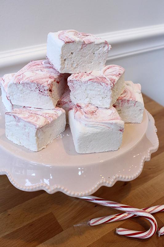 Oakleaf Cakes Bake Shop Boston Ma