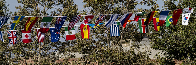World cup flags 2014