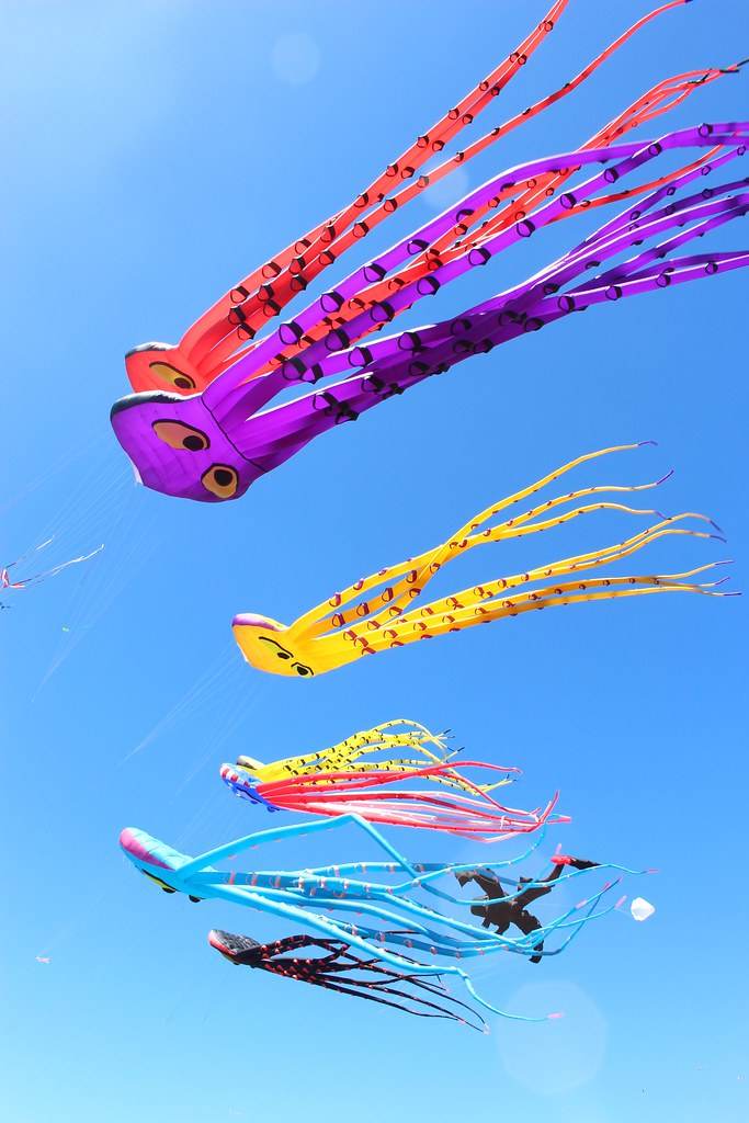 Kites from below