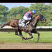 Bayern Burns Up the Track in Haskell