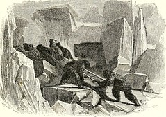 "Image from page 292 of ""Arctic explorations: the second Grinnell expedition in search of Sir John Franklin, 1853, '54, '55"" (1856)"