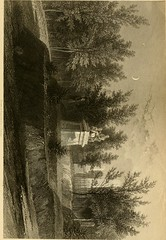 "Image from page 250 of ""Mount Auburn: its scenes, its beauties, and its lessons"" (1861)"